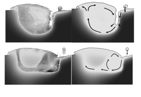FLOW-3Dの流体による溶接解析_予測現象_溶融池の流動パターン(混合率)